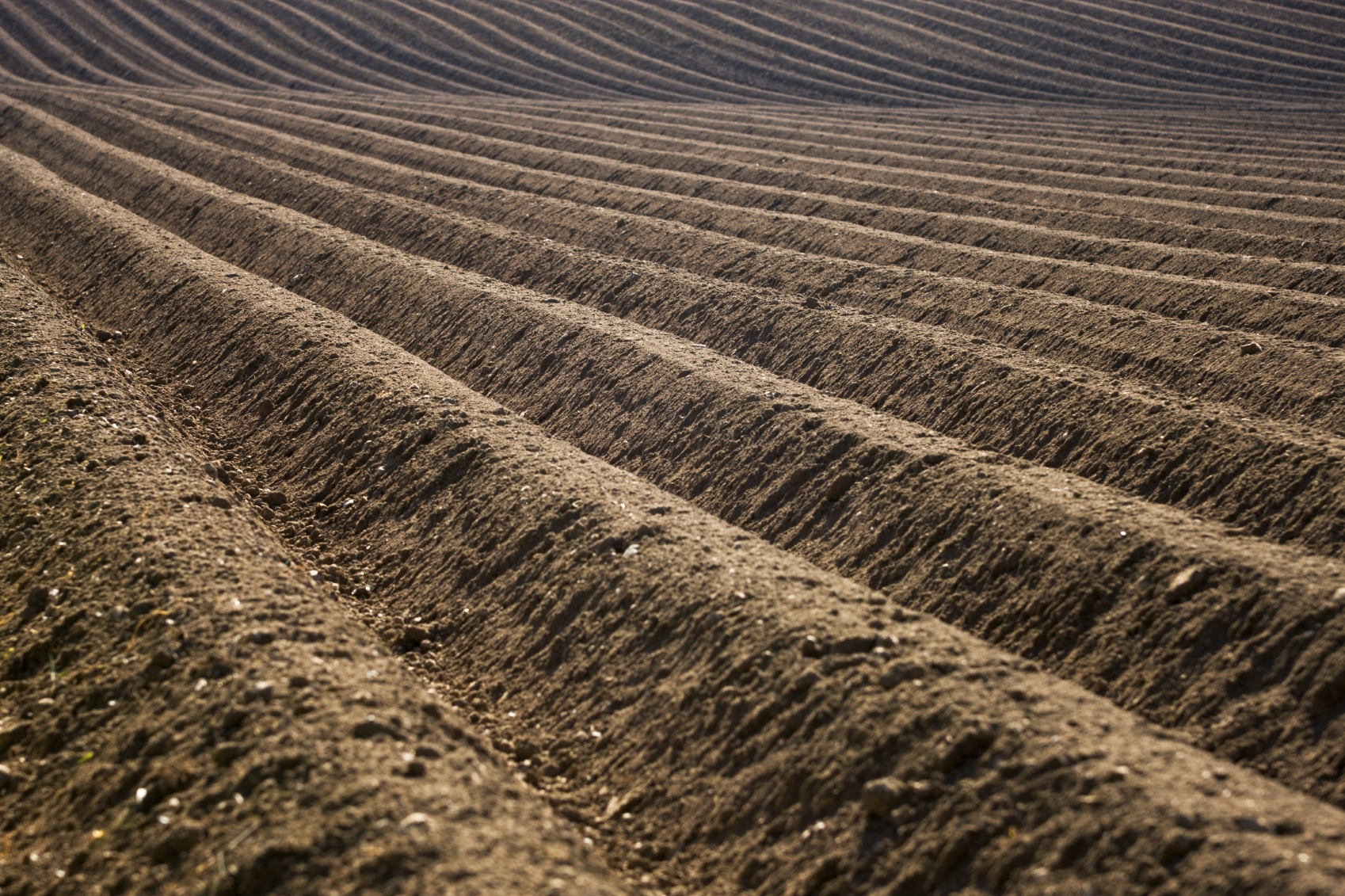 Evidence of increasing antibiotic resistance american for Natural resources soil information